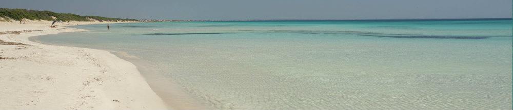Dek_maldive 1000x215